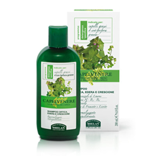 Picture of Shampoo for dry dandruff hair with woods and barks of conifers Linea Helan Capelvenere 200 ml